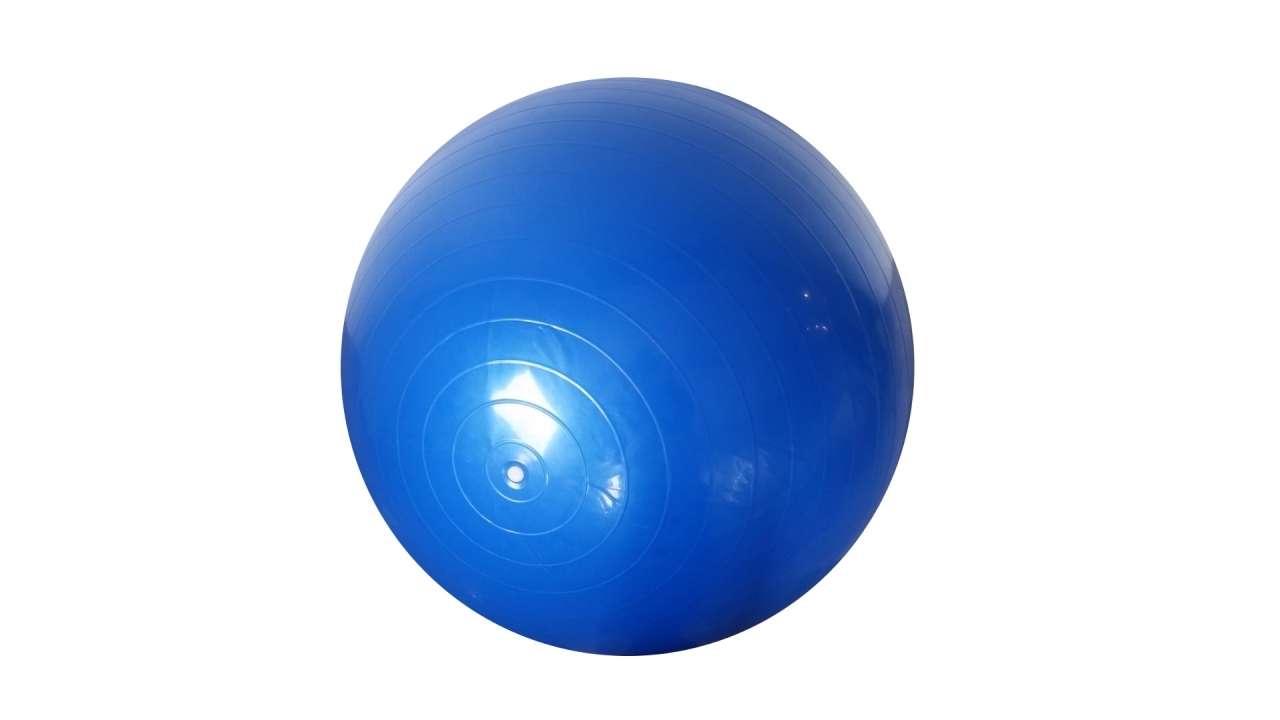 Bučice 2.5kg, tegovi za noge 2.5kg i pilates lopta 85cm